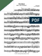 A.piazzolla - Escolaso - Fagotto & Archi (Orch.G.L.Z.) - 001 Fagotto