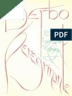 Verbo peregrino final.pdf