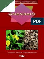 500PAmendoimed012009.pdf