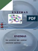 Sist.enzimt 2.ppt