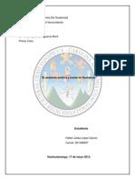 AMBIENTE POLITICO Y SOCIAL ACTUAL 2013.docx
