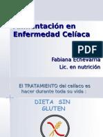 Alimentacion en EC