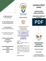 Chignahuapan.pdf