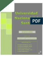 PRE-INFORME LISTO.pdf