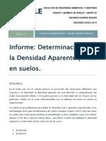 Informe Densidad Aparente y Real.docx