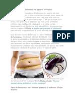 Elimina la grasa abdominal con agua de berenjena.docx