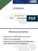 eficiencia.pdf