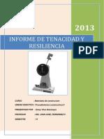 INFORME DE RESILIENCIA.docx