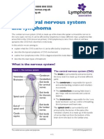 The Central Nervous System and Lymphoma