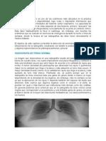 Anatomia de Torax (1).doc