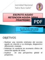 ESCROTO AGUDO-RAO-PRAIPRISMO.pdf
