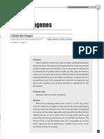 CASTILLO PARRA, César - El estudio de las imágenes.pdf