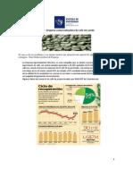 Caso comercializadora de café - VDT (1).pdf