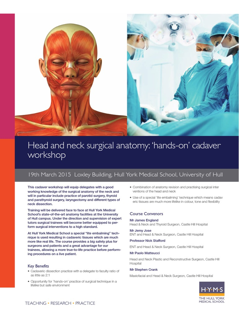 Head and Neck Surgical Anatomy Flyer | Cadaver | Surgery