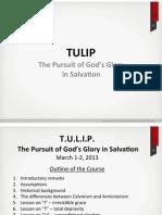 2013-03-01 TULIP Slides_FINAL.pdf