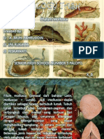 BIOLOGY TASK.pptx