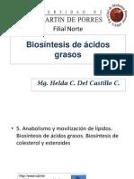 Biosíntesisde ácidos grasos.ppt