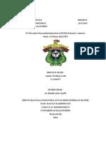 Case Report STEMI Extensive Anterior AMELIA VIRSHANY