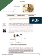 Evolución Biológica.pdf