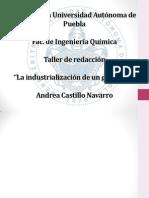 presentacion_laindustrializaciondeungraduado_AndreaCastillo.pptx