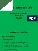 Metabolismo_energetico_I(MASTER).ppt