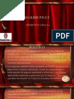 ANALISIS PEST.pdf