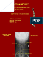 RADIOLOGY IMAGING MODALITIES OF THE SPINE. Cervical Spine Images