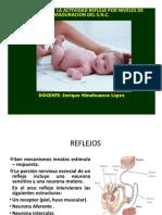 REFLEJOS [Modo de compatibilidad].pdf