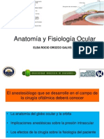 anatomiayfisiologiaocular.ppt