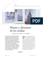 ALIMENTOS Y PLANTAS DE LOS ORIXAS.pdf
