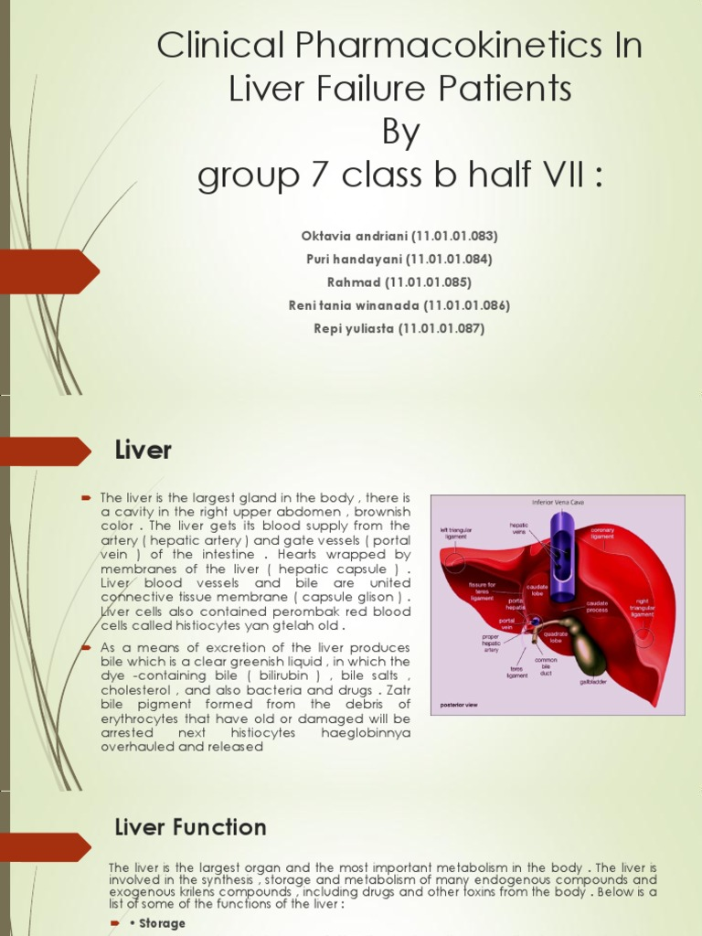 Clinical Pharmacokinetics In Liver Failure Patients Sendd Drug