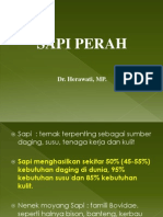 PP SAPI PERAH EKONOMI.pptx