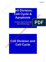 about Cell Division, Cell Cycle & Apostosis_Handout
