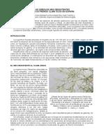 Árboles-más-resistentes a los extremos climáticos.pdf