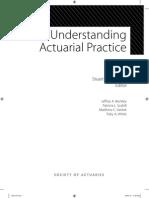 book-understanding-act-practice.pdf