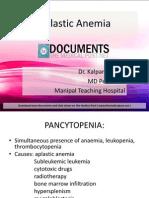 Hematology Aplasticanemia 120108092936 Phpapp02