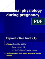 Maternal Physiology During Pregnancy
