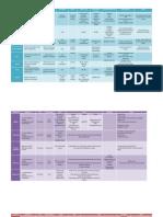 Protocolos .pdf
