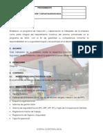 PROCEDIMIENTO DE INDUCCION Y CAPACITACION.pdf