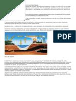 Os Ciclos Biogeoquímicos.docx