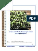 Balsamo 2.pdf