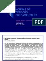 NORMAS DE DERECHO FUNDAMENTALES.ppt