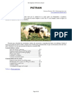 05-Pietrain.pdf