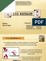 DIAPOSITIVAS C.V.G BAUXILUM 1.ppt
