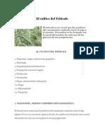 cultivo del triticale.pdf