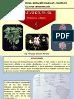Frijol - 001.pdf