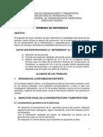 Terminos de Referencia 321.pdf
