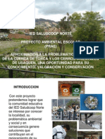 snproyambpresproyectoambiental-091023101010-phpapp01.ppt