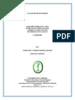 TALLER SEMANA I ( PROTOZOOS).docx