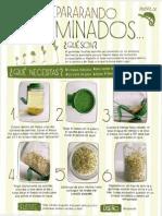 germinados.pdf